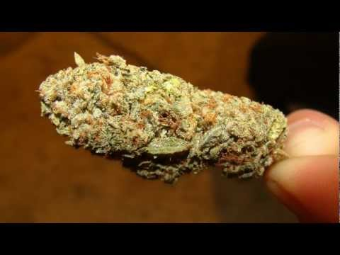 Getter & P0gman - Smokin' [HD]
