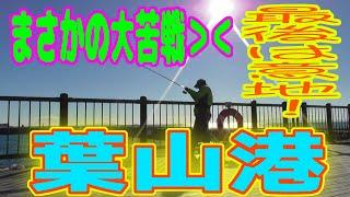 釣り動画ロマンを求めて 312釣目(葉山港)