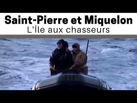Saint-Pierre et Miquelon : l'ile aux chasseurs (Documentaire)