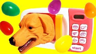 Learn Animals, Name and Sound For Kids Surprise Toys!  Microwave Oven Toys, Interesting Magic Video!