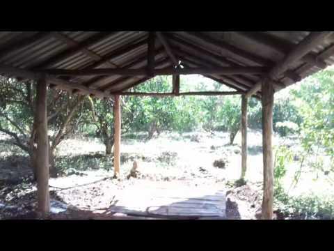 Rancho  Entrada Principal parte 16...