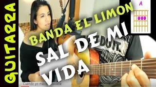 SAL de MI VIDA -Cover Banda el Limon en Guitarra