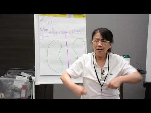 Kiiko Matsumoto: Kidney and San Jiao Theory (Part 1)