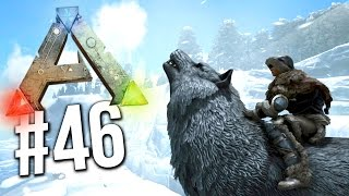 Ark Survival Evolved - LEVEL 100 DIREWOLF TAME! TAMING THE DIREWOLF!  (Ark Survival Evolved Taming)