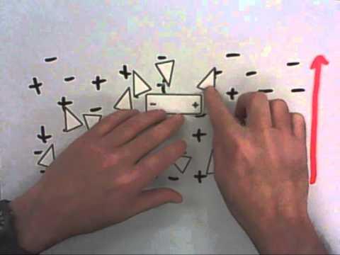 Paper Chromatography Explained