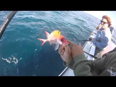 Seahorse deep sea charter west palm beach florida youtube for Deep sea fishing west palm beach