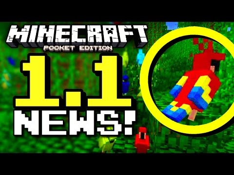 PARROTS COMING TO MCPE? (Minecraft PE 1.1 News!)