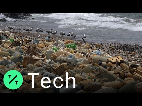 Could Sawdust Solve the World's Plastic Problem?
