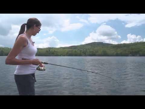Bass Fish NH WildSide