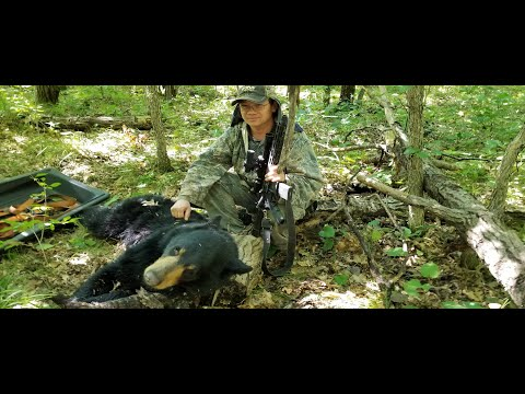 Tua Dais Dub Nyob Minnesota 2019 - Black Bear Hunting In MN