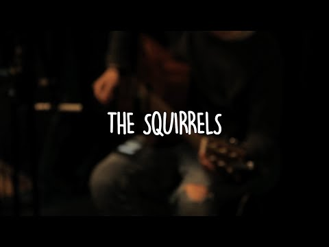 The Squirrels - How Much Time