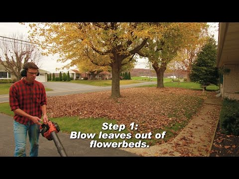 How To Clean Up Leaves in 13 Steps - 4K Timelapse
