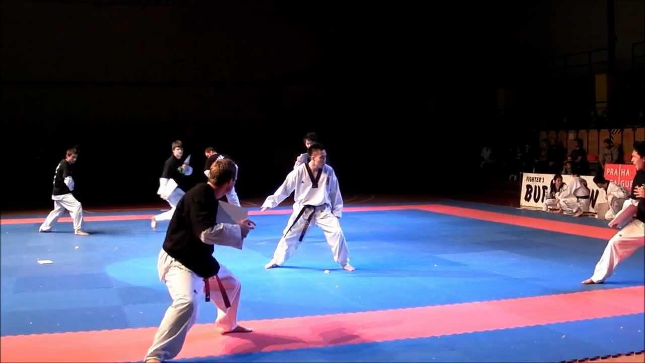 Fighter's Budoshow 2011