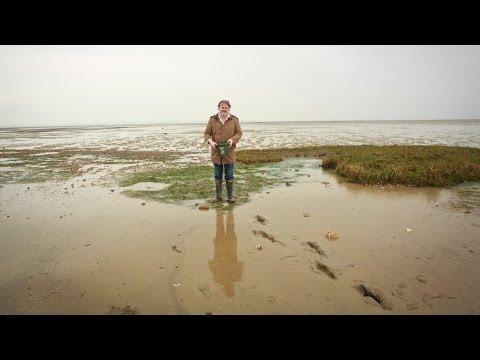 The Sportsman: A Rural British Gastropub Redefines Cooking Locally