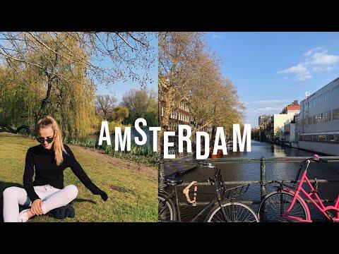 kleiner Trip nach Amsterdam Vlog //Hannah