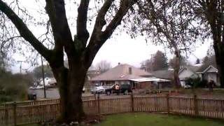 Redneck taking out a tree in creswell, Oregon