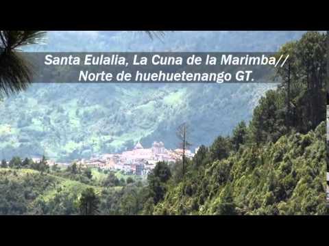 Download Marimba Maderas de mi Pueblo ''El Indocumentado'' (Video Oficial)
