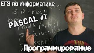 Программирование на Pascal. Переменные, типы данных, линейные алгоритмы. Видеокурс.