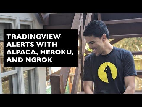 TradingView Strategy Alert Webhooks with Heroku, ngrok, Discord, Alpaca, and Python Flask