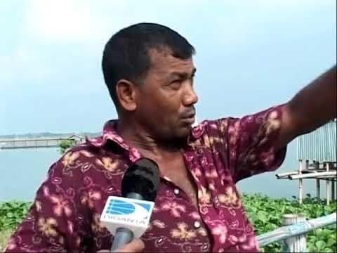 Illegal Romance At Beri Badh, Dhaka  Part 02   Amirul Momenin Manik   Television Report   YouTube