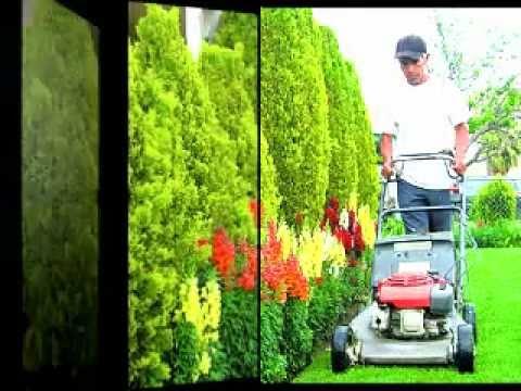Jardineria jardineria curso curso jardineria youtube for Jardineria online