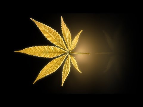 Marijuana Live Wallpaper Gold Leaf