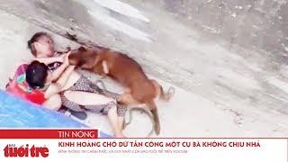 Kinh hoàng chó dữ tấn công một cụ bà không chịu nhả