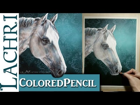 colored-pencil-demonstration---white-horse---lachri
