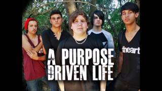 A Purpose Driven Life - A Milli [Cover]
