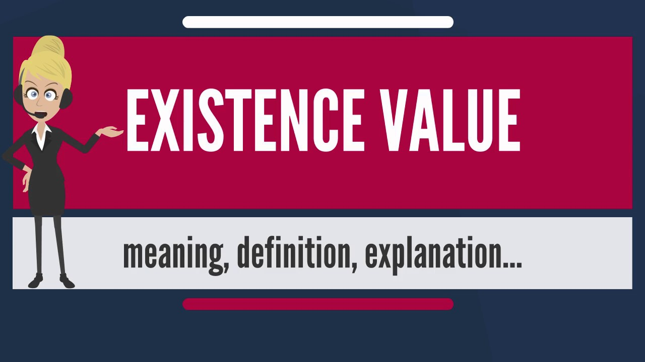 What Does EXISTENCE VALUE Mean? EXISTENCE VALUE Meaning U0026 Explanation