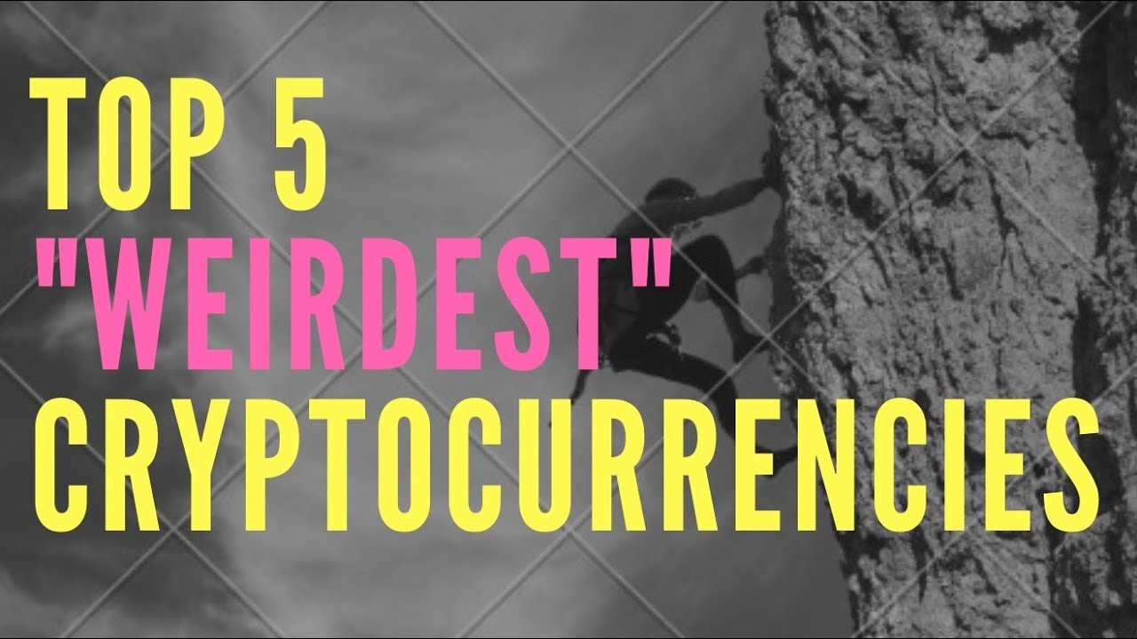 Top 5 WEIRD Cryptocurrencies | Cryptocurrency News