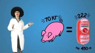 Из чего делают колбасу Докторскую?(Видео от 21.05.2012 Из чего делают колбасу? Сколько мяса в вареной колбасе? Где и как делают полезную колбасу?..., 2016-11-09T18:24:24.000Z)