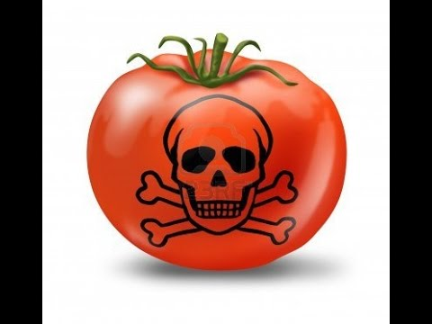 GMO FOODS - Monsanto / WORLD WIDE Boycott this Companies