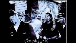 Metallica - Free Speech For The Dumb