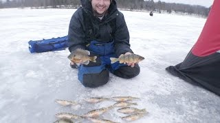 First Fish of the New Year! Wisconsin Panfish!