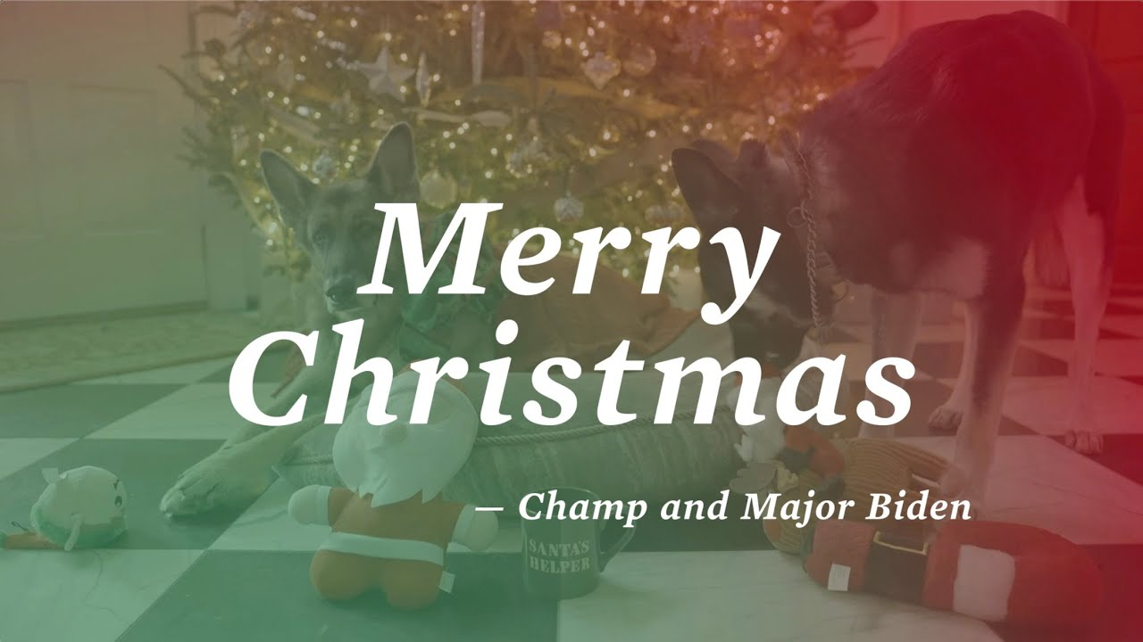 A Holiday Message From Champ And Major Biden
