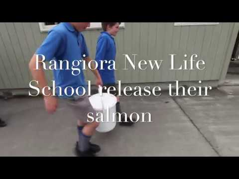 RNLS release their salmon