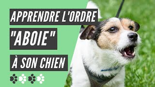 comment apprendre l ordre aboie  son chien