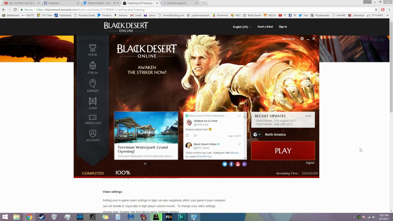 UPDATE: CHECK DESCRIPTION Black Desert Online Crash