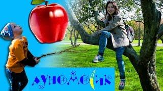 ВЛОГ 👪 Лазаем по деревьям 🍁 Тырим яблоки 🍎 Готовим пирог  🍥 Гуляем в парке