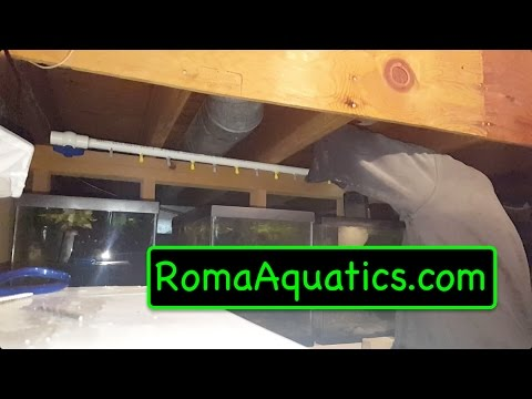 DIY Central Air System For Aquarium Racks - RomaAquatics.com 🆒