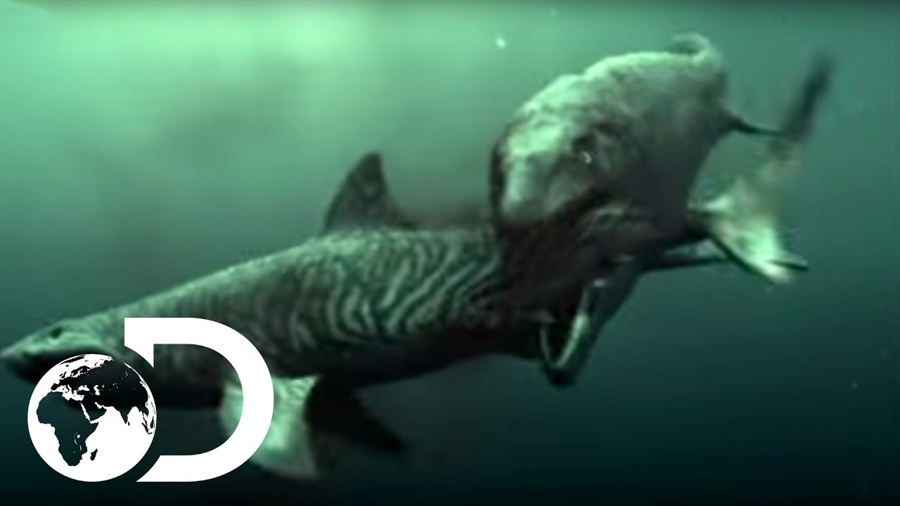 Mosasaur Shark Attack - Reign of the Dinosaurs - YouTube