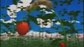 Президент и амазонка - клубничка (видеоклип)