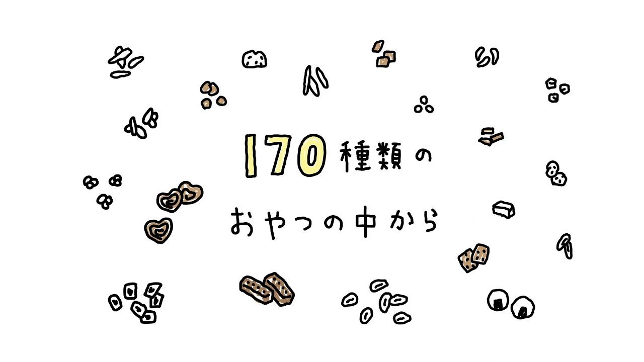 snaq.me サービス紹介動画
