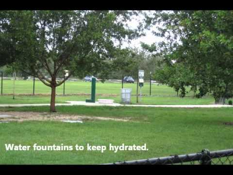 Greynolds Dog Park