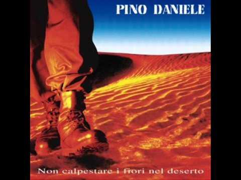 'O cammello 'nnammurato. Pino Daniele