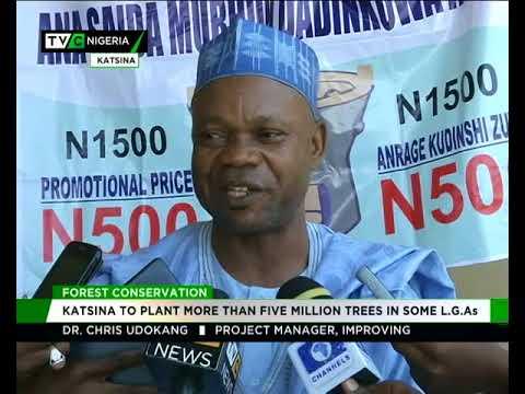 Katsina govt to plant 5.5 million trees in some LGAs