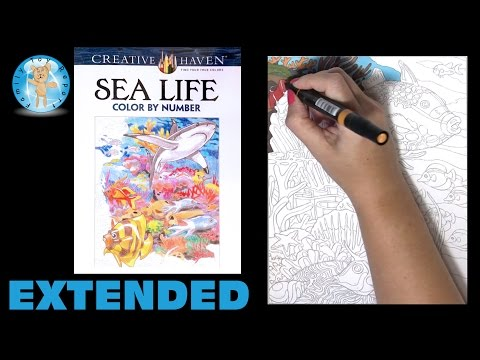 Creative Haven Sea Life Adult Coloring Book Color By Number Fish Extended - Family Toy Report