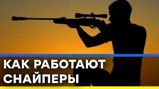 Как один украинский снайпер смог остановить колонну российской техники - Секретный фронт