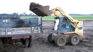 Gehl skidsteer filling 1952 Chevy 2-ton dump truck with manure